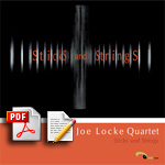 Joe Locke &quot;Sticks and Strings&quot;